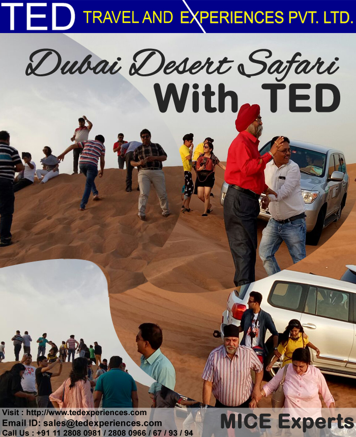 dubai desert safari with TED Travels